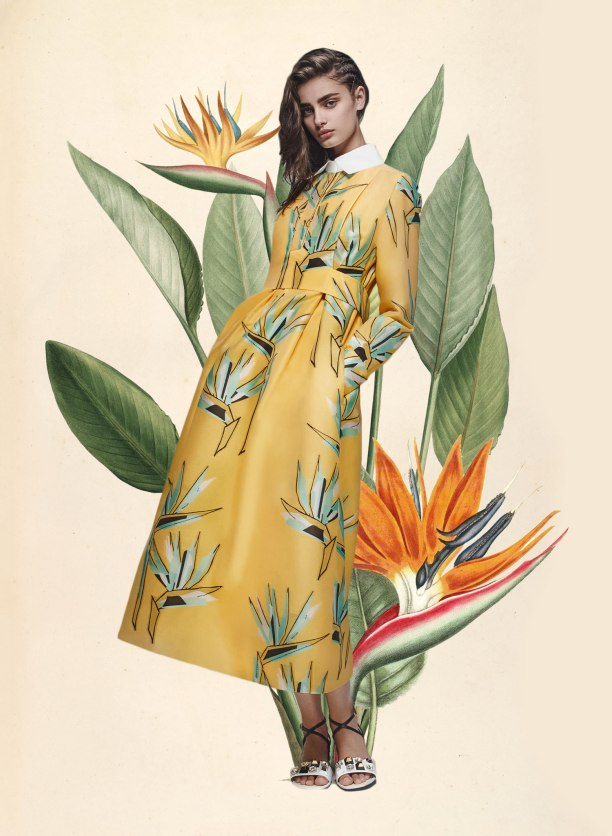 miss moss botanical resort 2016 fendi