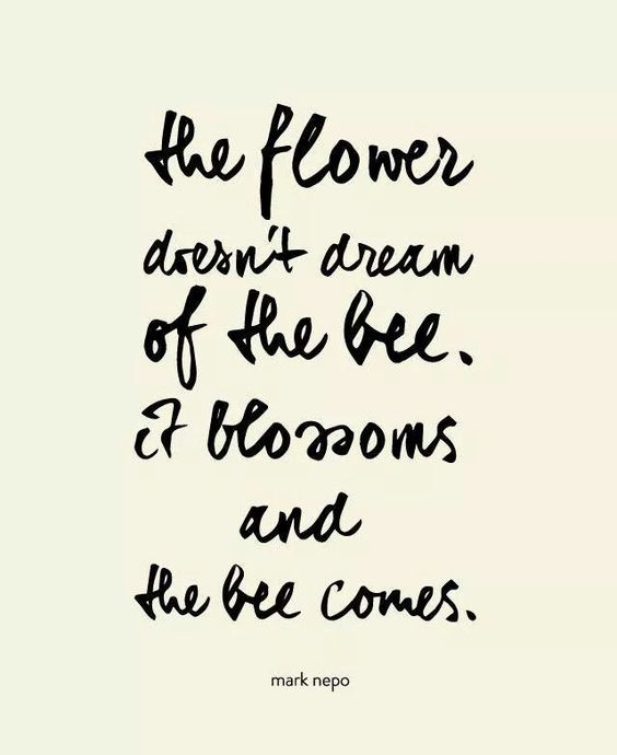 the flower doesn't dream of the bee, it blossoms and the bee comes